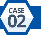 Case 02
