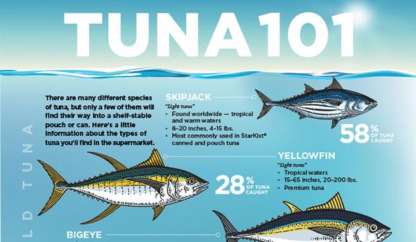 Tuna 101